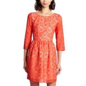 French Connection NWT Lace Mini Dress 3/4 Sleeve 0